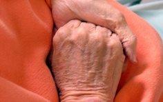 Parengta Sveikatos mokymo senyvo amžiaus pacientams, patyrusiems sužalojimus, programa